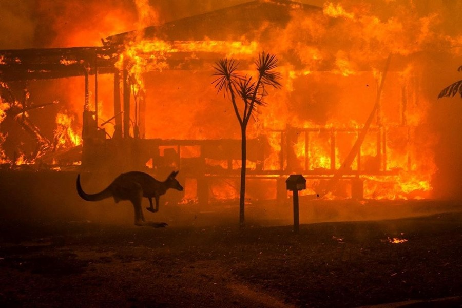 The Armenian Missionary Association of Australia Donates $10,000 to NSW Rural Fire Services